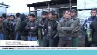 Рузские мигранты  Общая проблема. Общая цель.