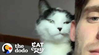 Cat And His Dad Are Obsessed With Each Other   The Dodo Cat Crazy