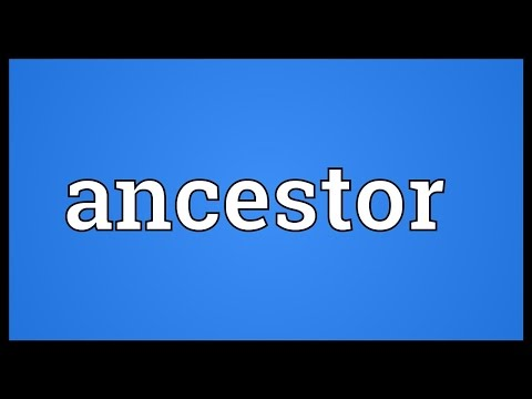 Ancestor Meaning