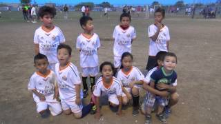 West United Soccer League finales Leones U8  Abril 2014 GoCampeones com