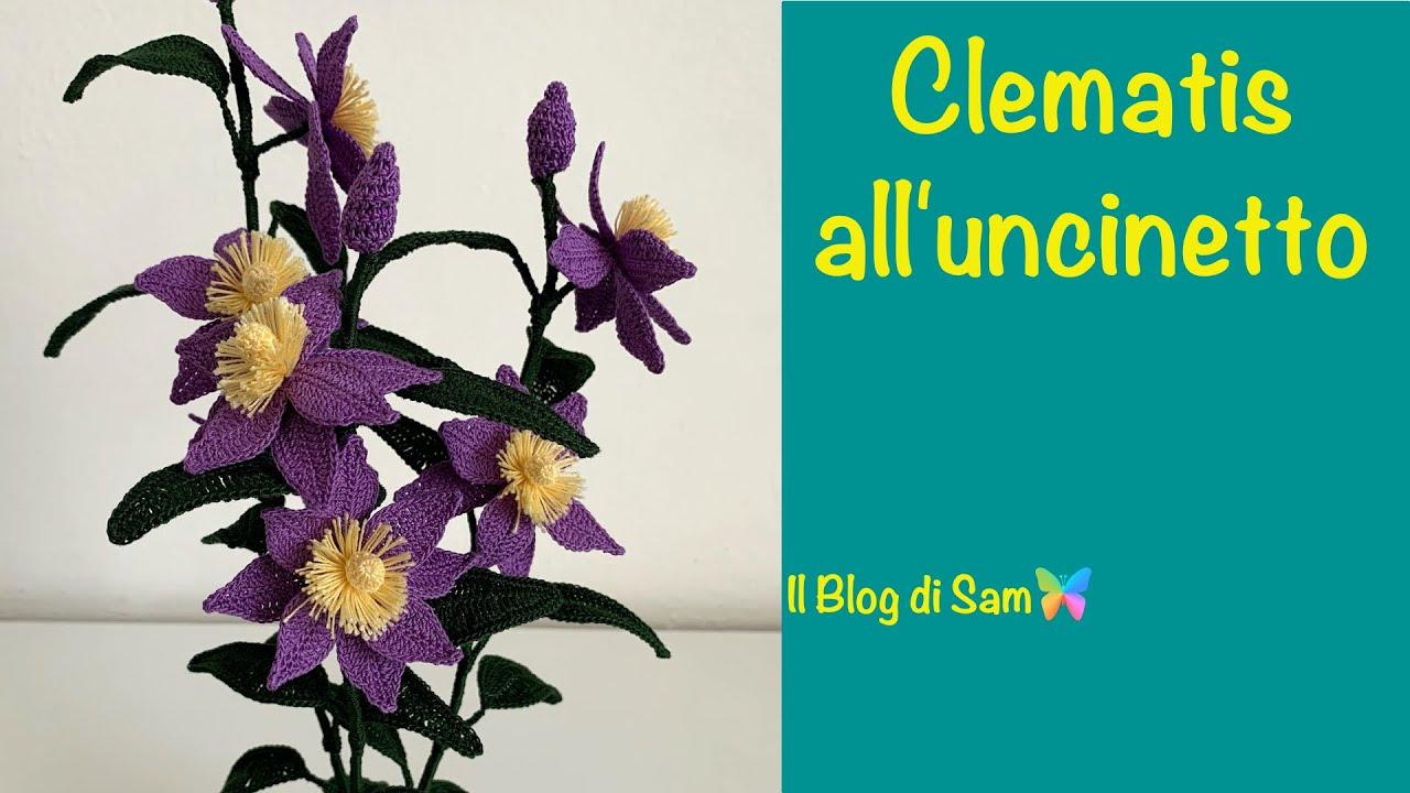 Spiegazione della Clematis all'uncinetto