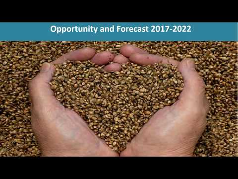 Seed Industry in India | Price Trends, Size, Share, Report And Forecast 2017-2022