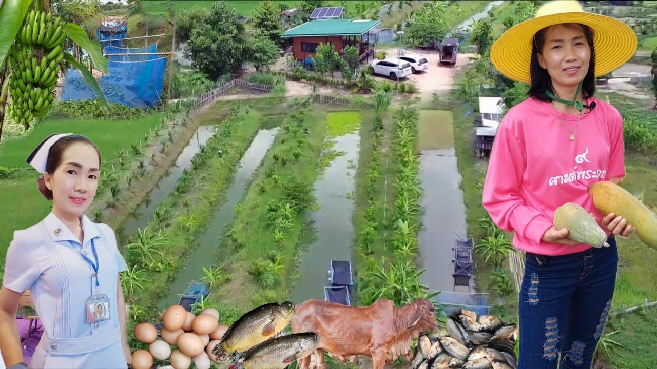 พยาบาลคนสวย!!ทำเกษตรผสมผสานสวยๆ..กุ้งหอยปูปลาไก่กบครบวงจรมีทุกอย่าง