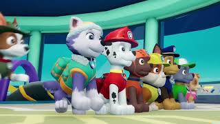 Paw Patrol: On A Roll! — трейлер