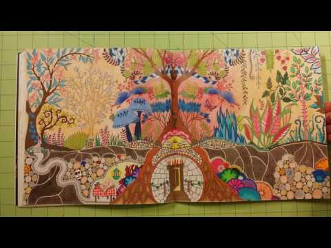 - The Enchanted Forest By Johanna Basford Adult Coloring Book Review Flip  Through - YouTube