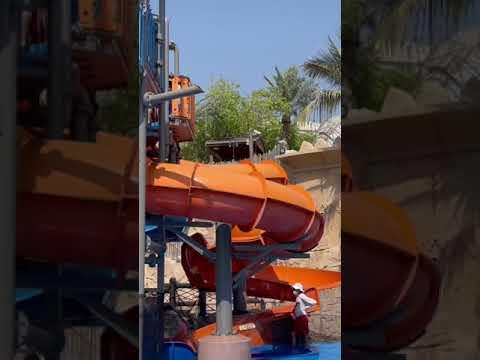 Wild wadi | water park Dubai #shorts