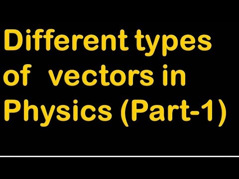 Different Types Of Vectors In Physics|In Hindi|Part-1