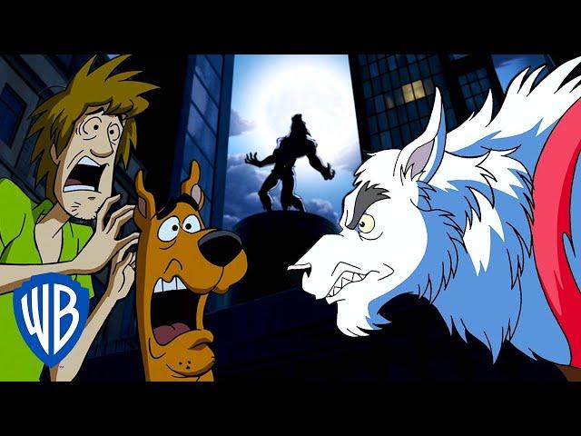 Scooby-Doo! | WEREWOLVES! 🐺 | WB Kids