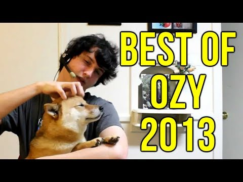 Best of Ozy The Shibe Doge - 2013 Edition