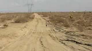 Doberman Pinscher - Running To Greet Me In The Desert Short Vid