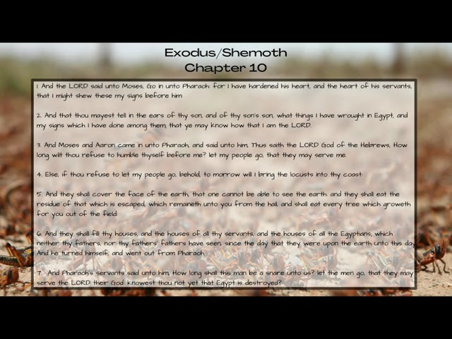 Exodus 10