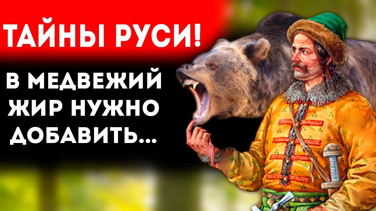 Польза медвежьего жира