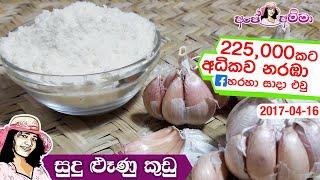 කලසටරල පලනය කරන සද ළණ කඩ  How to make garlic powder at home by Apé Amma