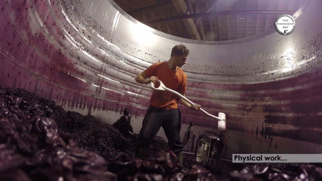 The Winemaker's Art - Trailer
