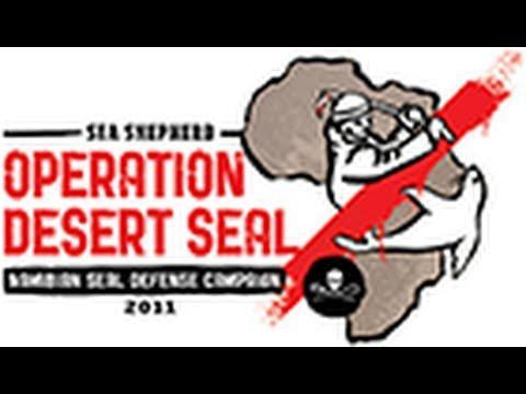 Seal Wars Sea Shepherd Special Namibia
