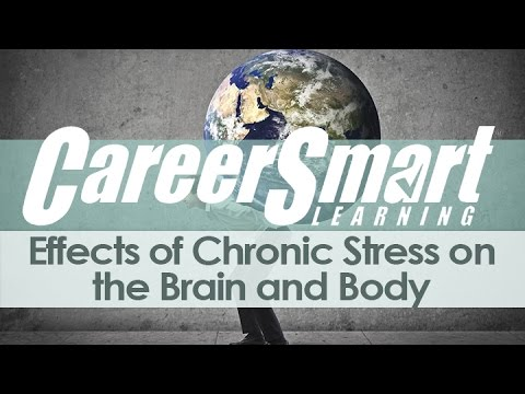 Effects of Chronic Stress on the Brain and Body
