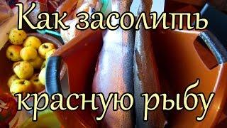КАК ЗАСОЛИТЬ КРАСНУЮ РЫБУ (ФОРЕЛЬ)(Как засолить красную рыбу в домашних условиях (рецепт) Рецепт праздничного блюда ..., 2015-01-07T16:44:09.000Z)