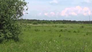 видео Продажа земли на Новорижском шоссе