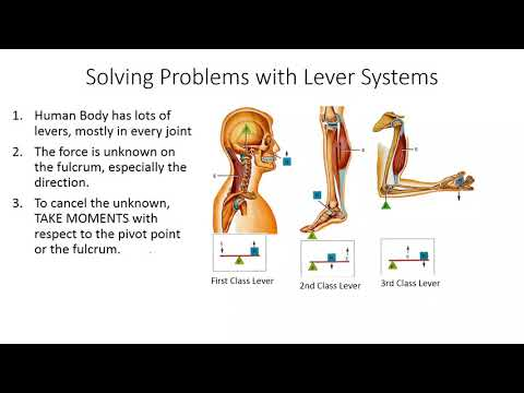 How to Solve Lever Problems | ประเทศไทย VLIP LV