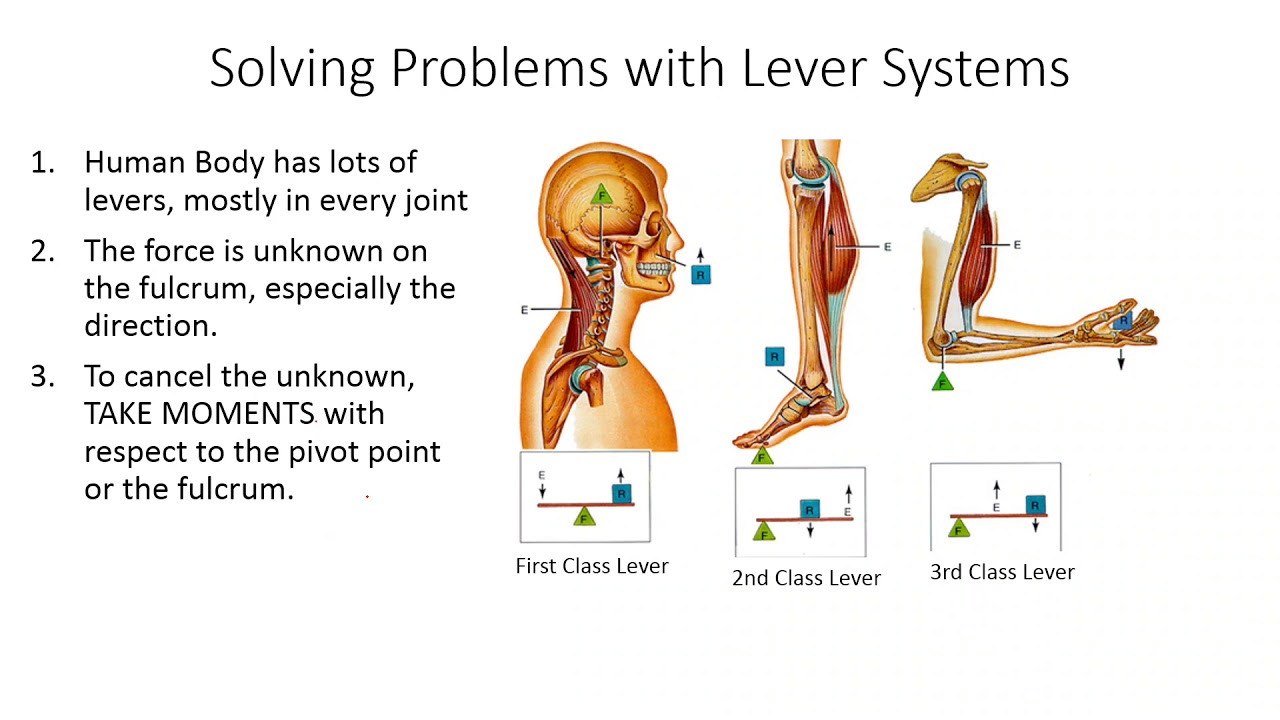 How to Solve Lever Problems