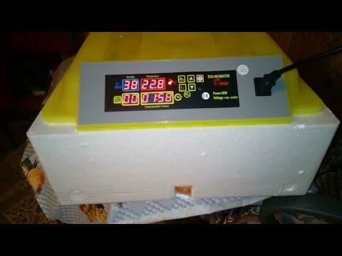 Купили инкубатор Sititek 98 на AliExpress.
