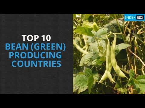 Top 10 Bean (Green) Producing Countries