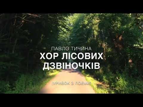 """Павло Тичина """"Хор лісових дзвіночків"""""""