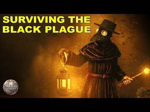 How You Could Have Survived the Black Plague
