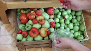 Запасаем (консервируем) томаты (помидоры)
