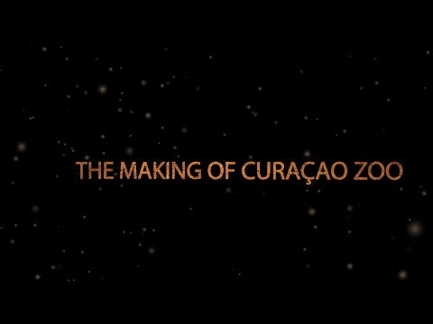 The Making of the Curaçao Zoo Documentary