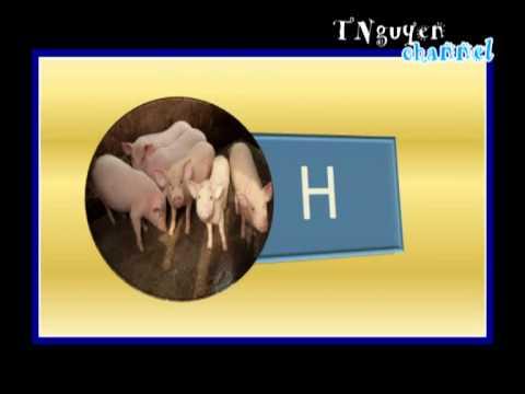 Dạy trẻ tự kỷ_BANG CHU CAI.flv