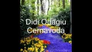 Download DIDI ODAGIU  - Eu sunt fata dobrogeana.wmv MP3 song and Music Video
