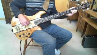 The Zombies She Not There  Greg Papaleo Bass Cover