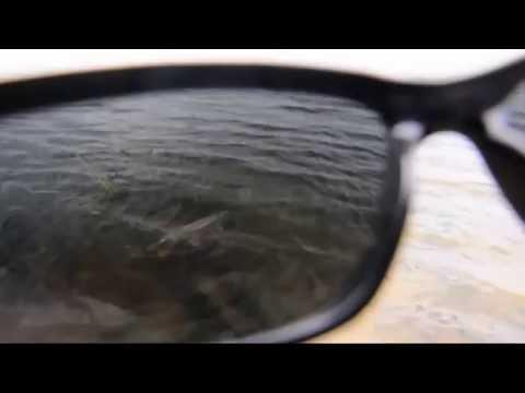 Взгляд на щуку через поляризационные очки.