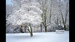 Antonio Vivaldi  - 사계 중 겨울 (full version)[연주곡]