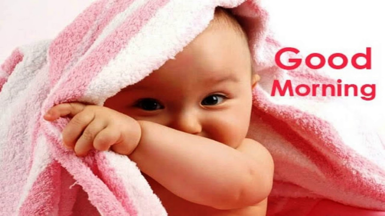 Good Morning Hd Images Free Download Youtube