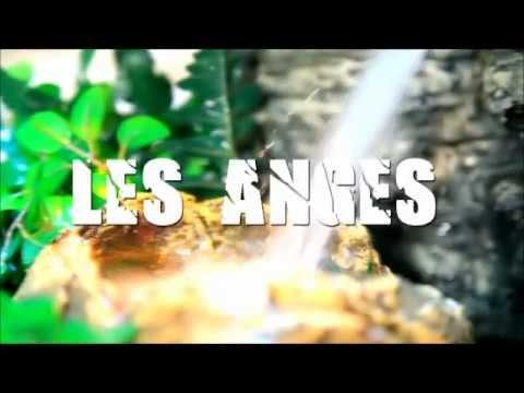 Les Anges (na ma longo tè)