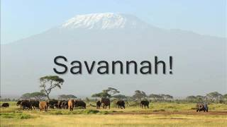Diviners  Savannah (feat Philly K) Lyrics
