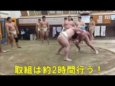 【近畿大学】相撲部2017