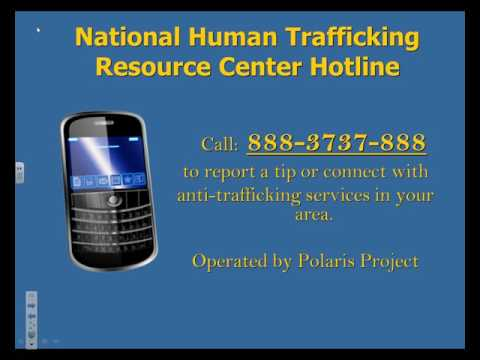 Trocaire College : People Against Trafficking Humans