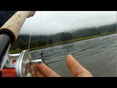 Laksefiske/salmonfishing Gaula 2011 Osfossen Neteland production HD