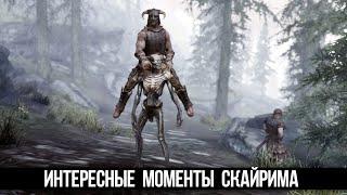 Skyrim Интересные Моменты и Секреты Игры