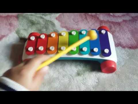 royalty free xylophone cringe