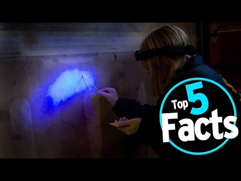 Top 5 Amazing Facts About DNA Evidence