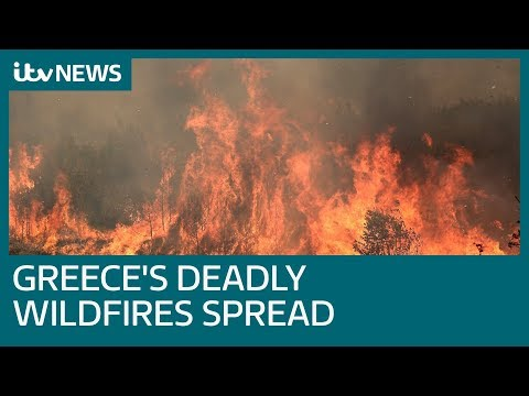 Death toll increases as Greek wildfires spread | ITV News