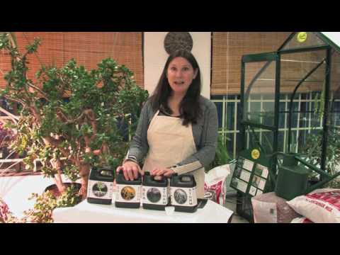 Vancouver Island Organic Gardening Tips Part 1 Planting Seeds
