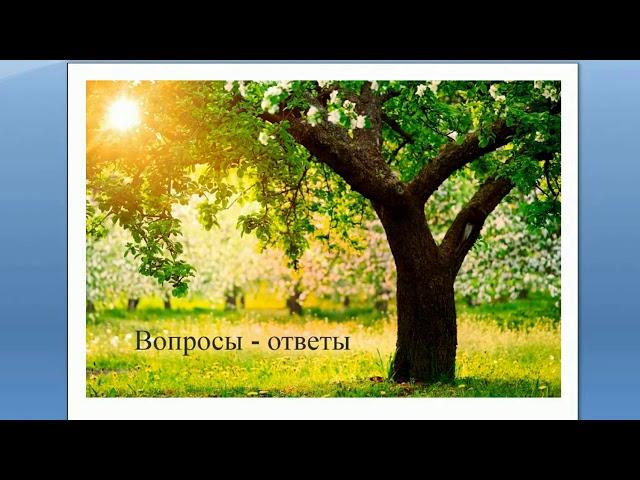Обрезка деревьев от А до Я: Ответы на вопросы. Отвечает Николай Рабушко. ©
