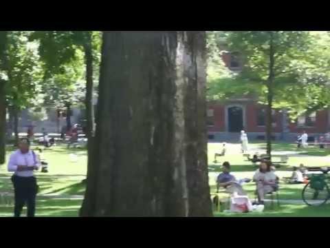 Гарвардский Университет / Harvard University