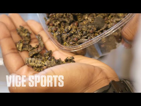 Dan Joyce - Pro Football Player Eats Caterpillars For Protein