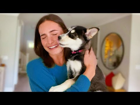Puppy meets her new Mom!